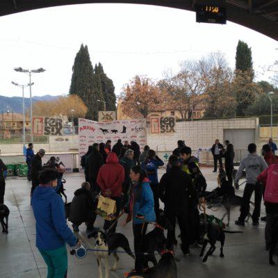 Vet&Run Trofeu Muixing (20)-min